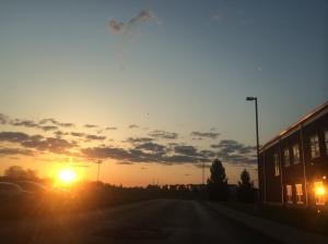 LM Sunrise