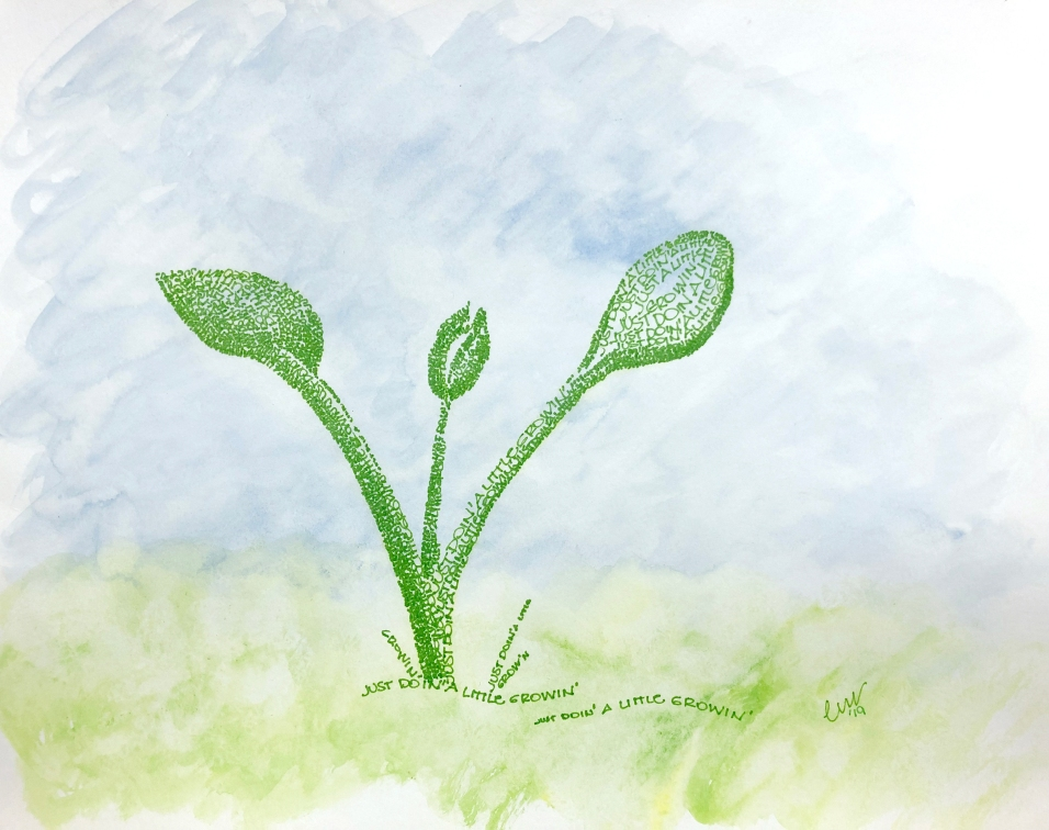 Growing Seedling